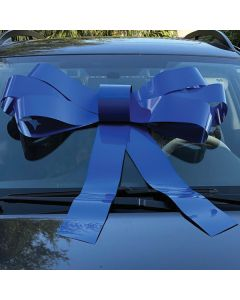 Windshield Bow: Blue on auto in auto dealership