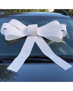 Windshield Bow: White on a vehicle in an auto dealership