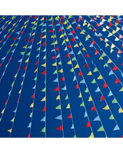 Multi colored Triangular Pennant String in sky over auto dealership